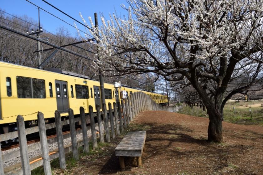 久米川駅、東村山駅
